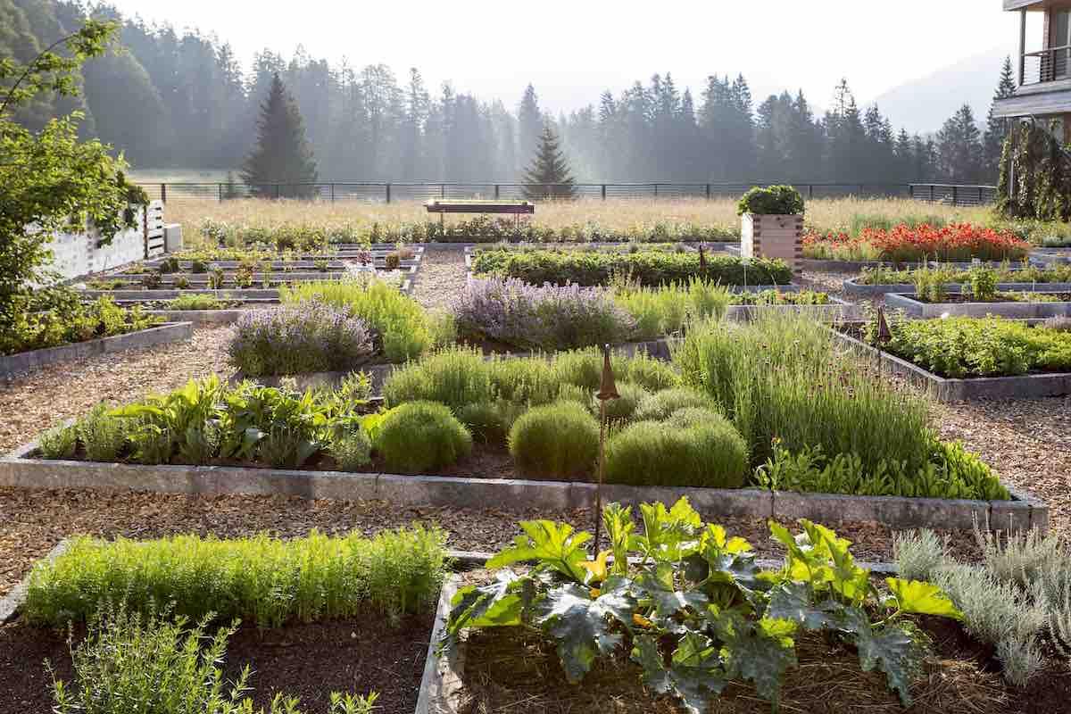 Der Kranzbach Kräutergarten ist ein Garten der Sinne.