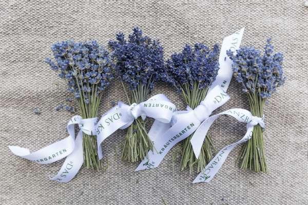 Lavendel aus dem Kranzbach Kräutergarten sorgt für Entspannung.